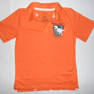 Baju Anak Sonoma Dino Fosill Valley Orange